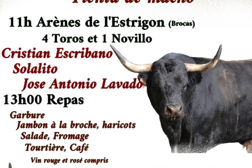 Toros pour Dimanche 31 Octobre
